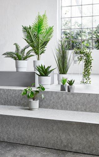 Kunstig plante SANDER H70cm m/potte