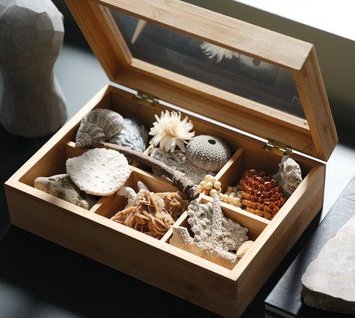 Коробка для чаю STORM 17х23х8см дерево