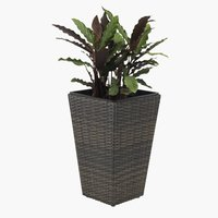 Garden planter BLOMMOR W31xL31xH50 brown