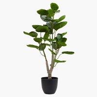 Τεχνητό φυτό ARVID Υ71cm πράσινο