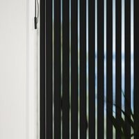 Vertical Blind ROGEN 100x250cm black