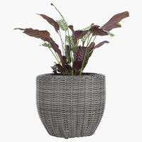Flower pot SVARTBAK D42xH36 grey